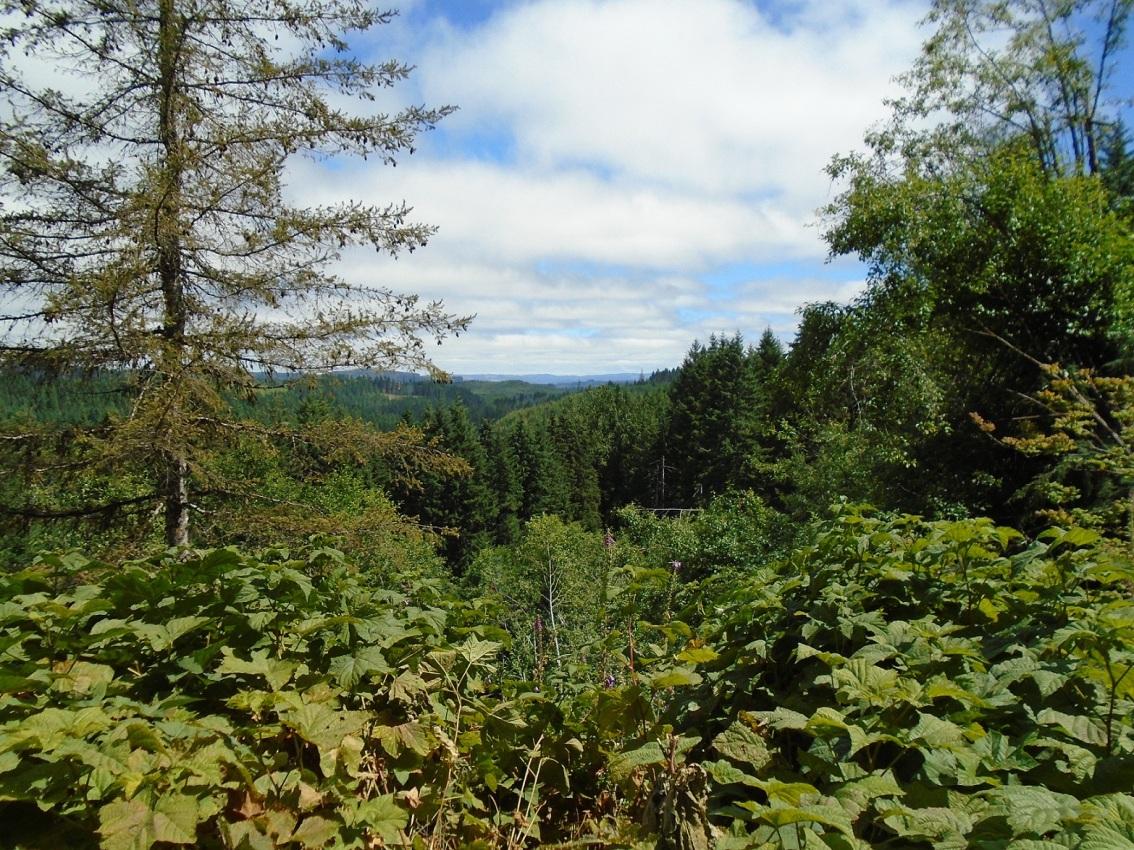Great American Road Trip- Part5
